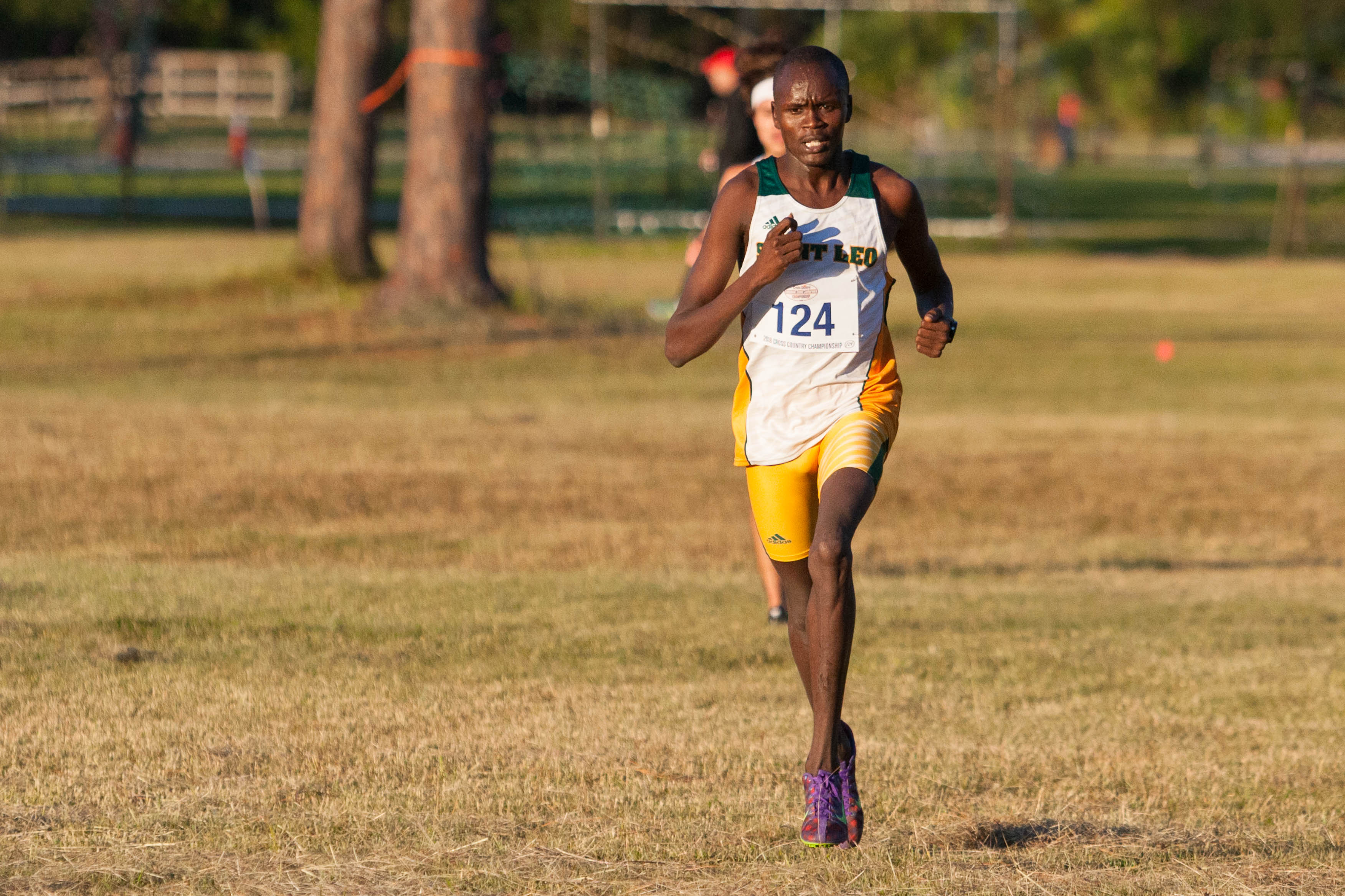 Sunshine State Conference Cross Country Championship